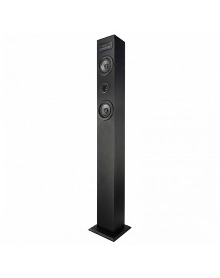 Tour sonore bluetooth BRIGMTON BTW-41-N USB MICRO SD 40 W Noir